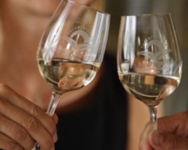 Wein in der 2-Thermenregion@Bergmann
