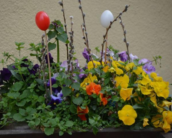 Blumen und Ostereier@Lederer