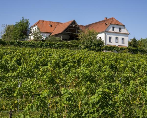 Weingarten Bergstadl@Bergmann