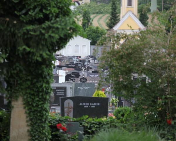 Friedhof@lederer