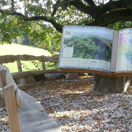 NaturLese-Insel St. Blasen: Die Biografie der Erde