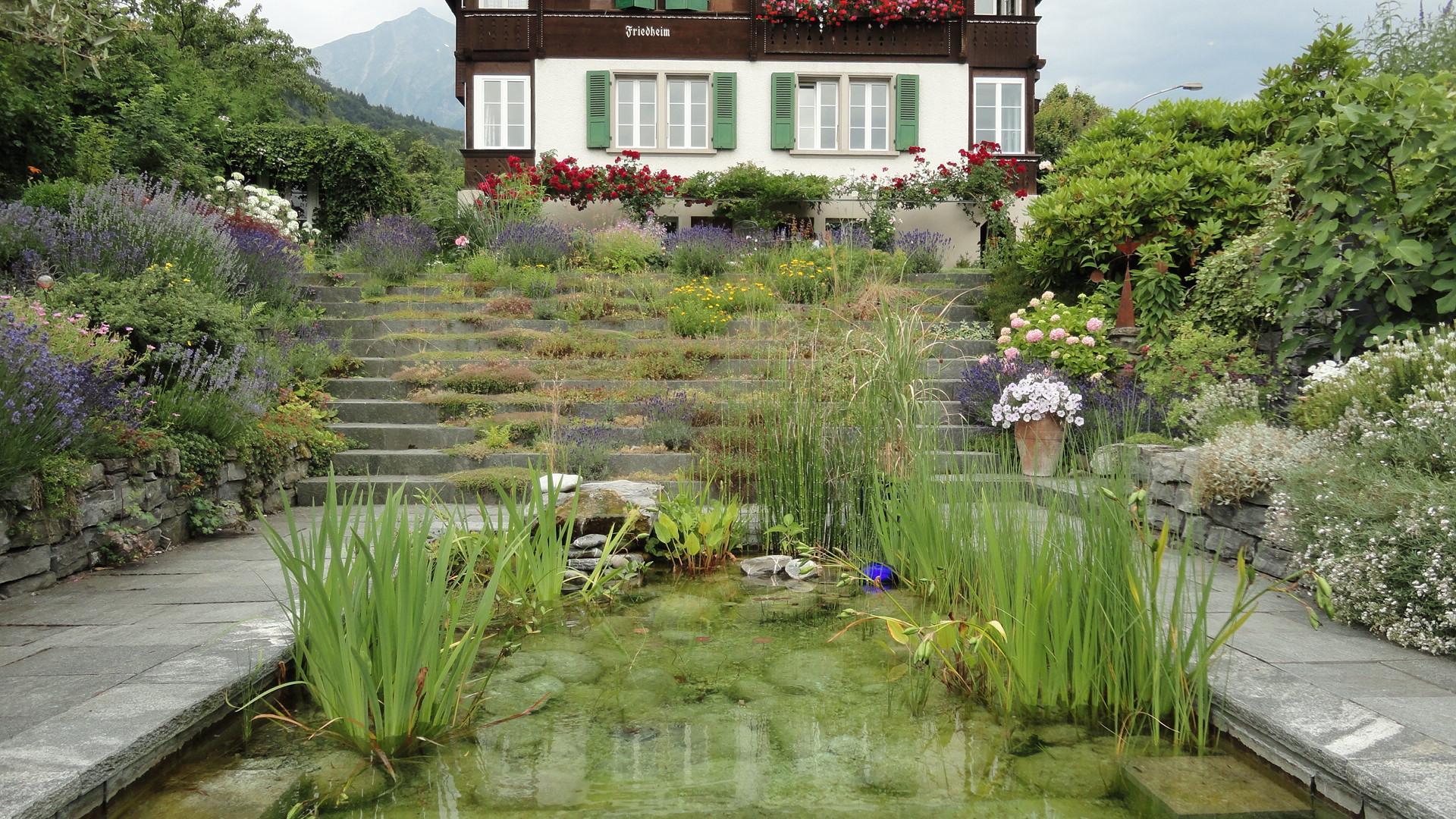 Mini-Naturbadeteich
