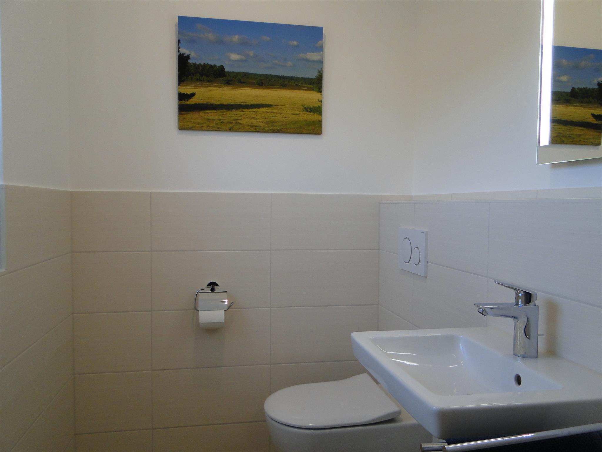 Hartriegel - WC