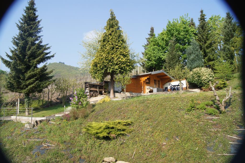 Liegewiese Villa Tummelchen