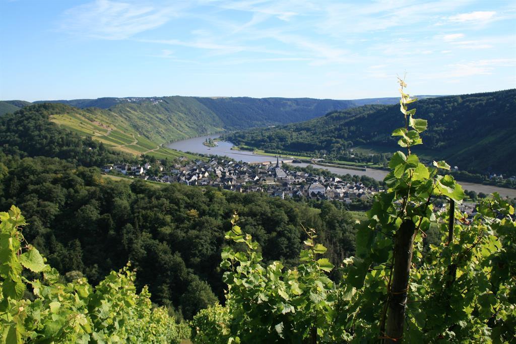 Ortsansicht Enkirch 2