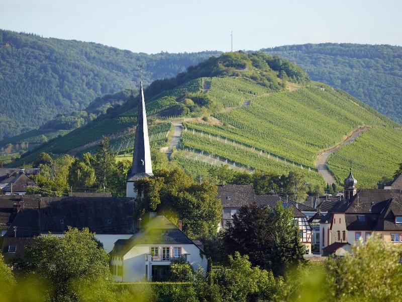 Weinort Mülheim an der Mosel