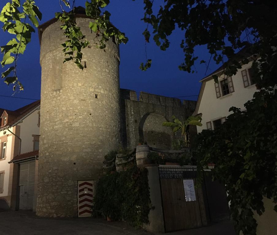 Obertor Flörsheim-Dalsheim