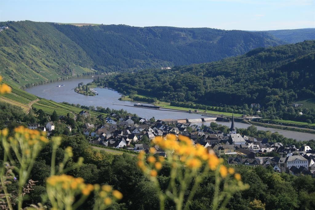 Ortsansicht Enkirch 3