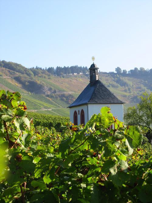 Weinkulturweg