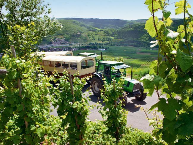 Moselstern-Planwagenfahrt durch die Weinberge