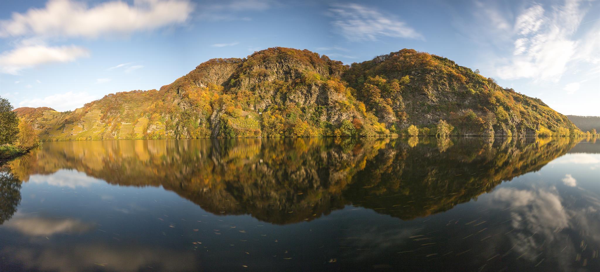Moselloreley im Herbst