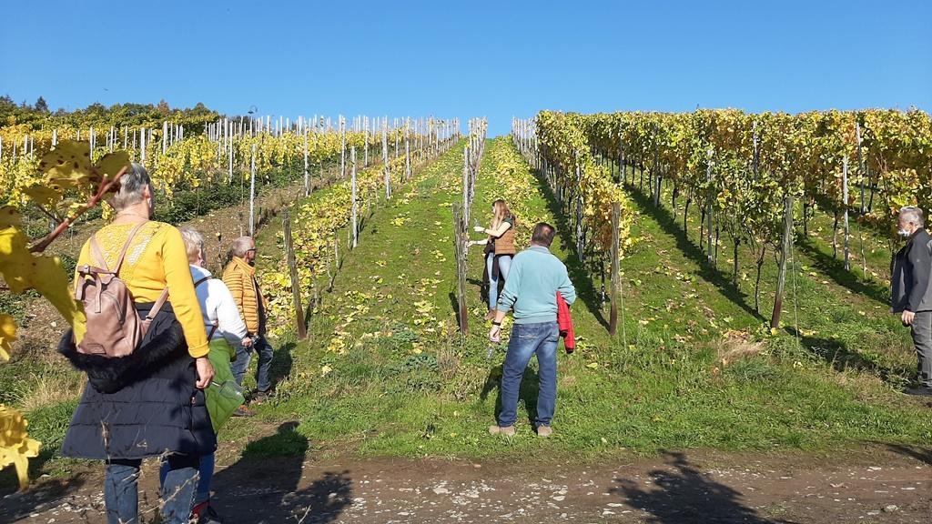 Weinprobenspaziergang