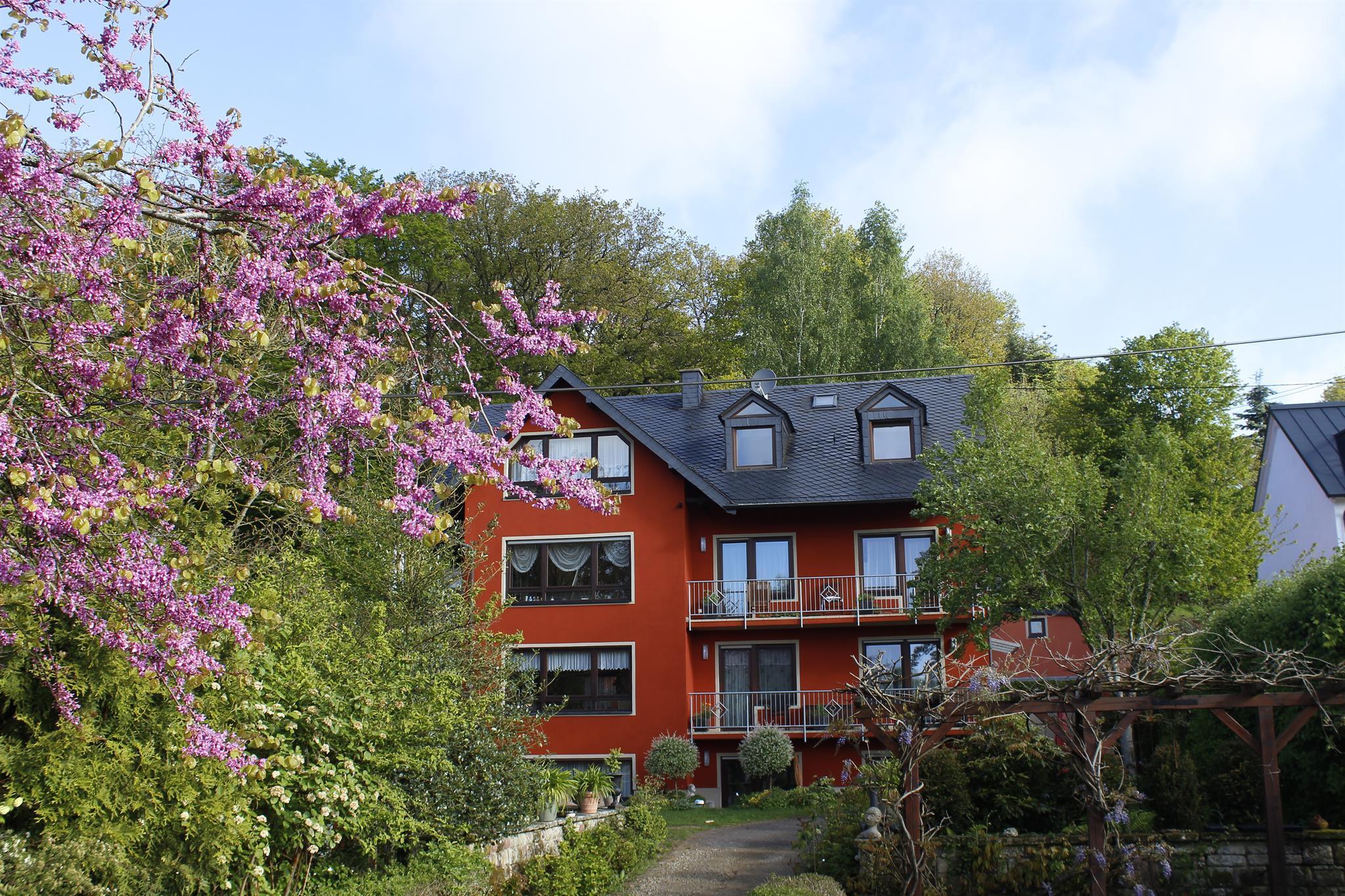 Haus Ilex im Frühling