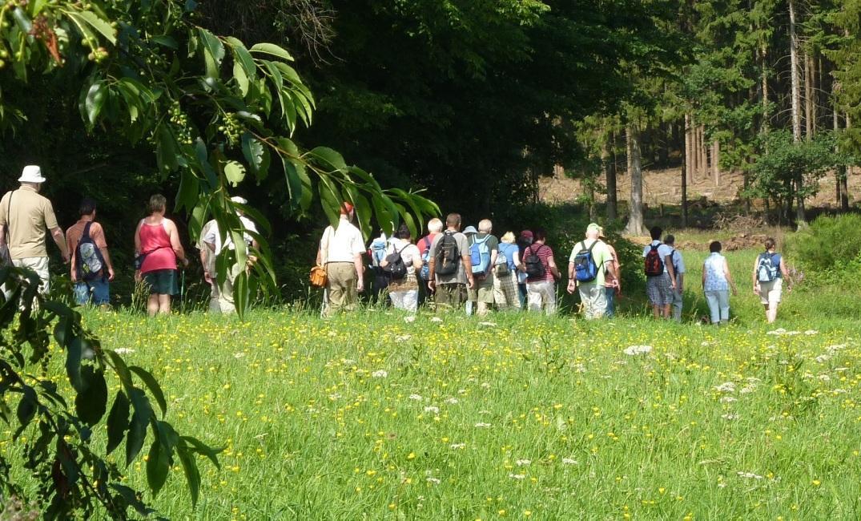 Wandergruppe, @ TI Vulkanregion Laacher See