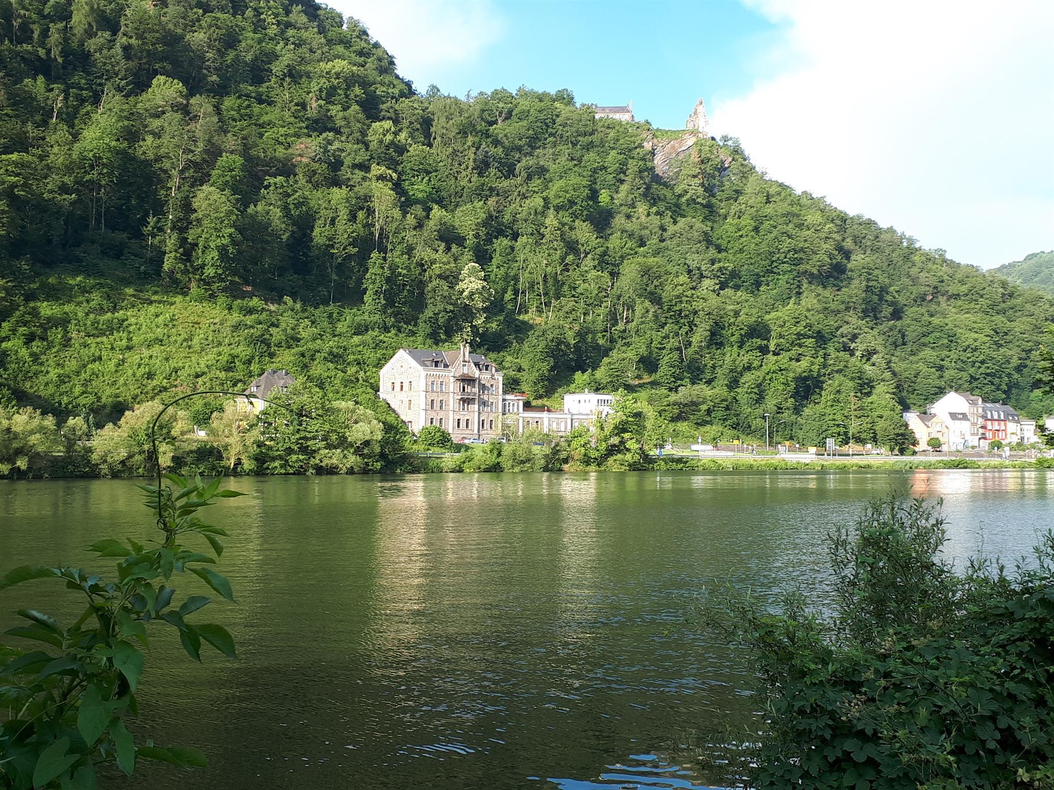 Weingut mit Grevenburg