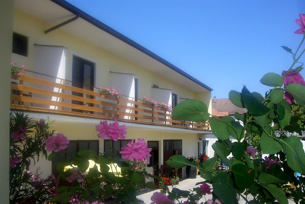 Ferienwohnung Gästehaus Elfriede Apartment/2 Schlafräume/Dusche, WC (618039), Mörbisch am See, Neusiedler See, Burgenland, Österreich, Bild 1