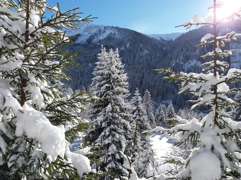 Ferienwohnung Haus Ganahl Ferienwohnung (2551602), Wald am Arlberg, Arlberg, Vorarlberg, Österreich, Bild 28