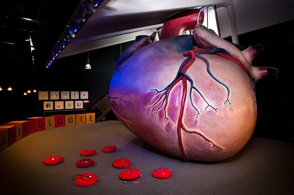Das Begehbare Herz