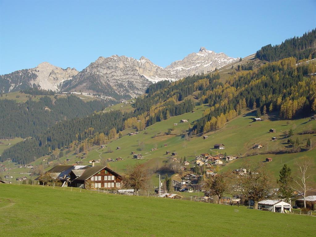 Appartement de vacances Aegertenstrasse 18 # 1 4-Bett-Wohnung (2027294), Lenk im Simmental, Vallée de la Simme, Oberland bernois, Suisse, image 2