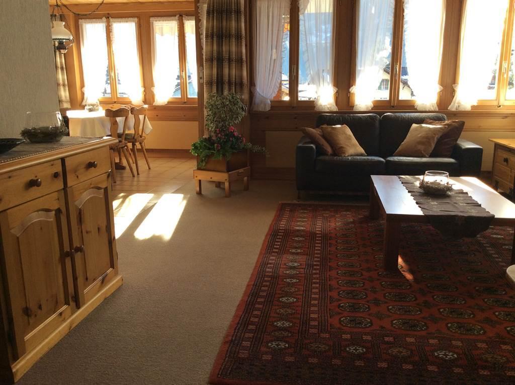 Appartement de vacances Schmid's Hus - Butz 4-Bett-Wohnung (2027207), Lenk im Simmental, Vallée de la Simme, Oberland bernois, Suisse, image 4