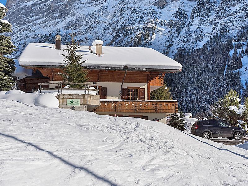 Ferienwohnung Zwygarten 2 Bett Wohnung Obj. 2408 (887331), Grindelwald, Jungfrauregion, Berner Oberland, Schweiz, Bild 11