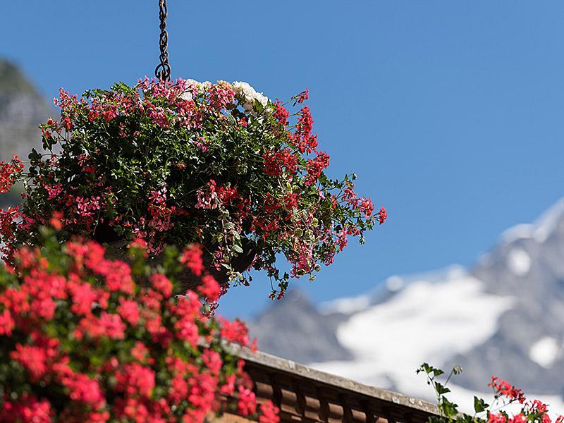 Ferienwohnung Zwygarten 2 Bett Wohnung Obj. 2408 (887331), Grindelwald, Jungfrauregion, Berner Oberland, Schweiz, Bild 4