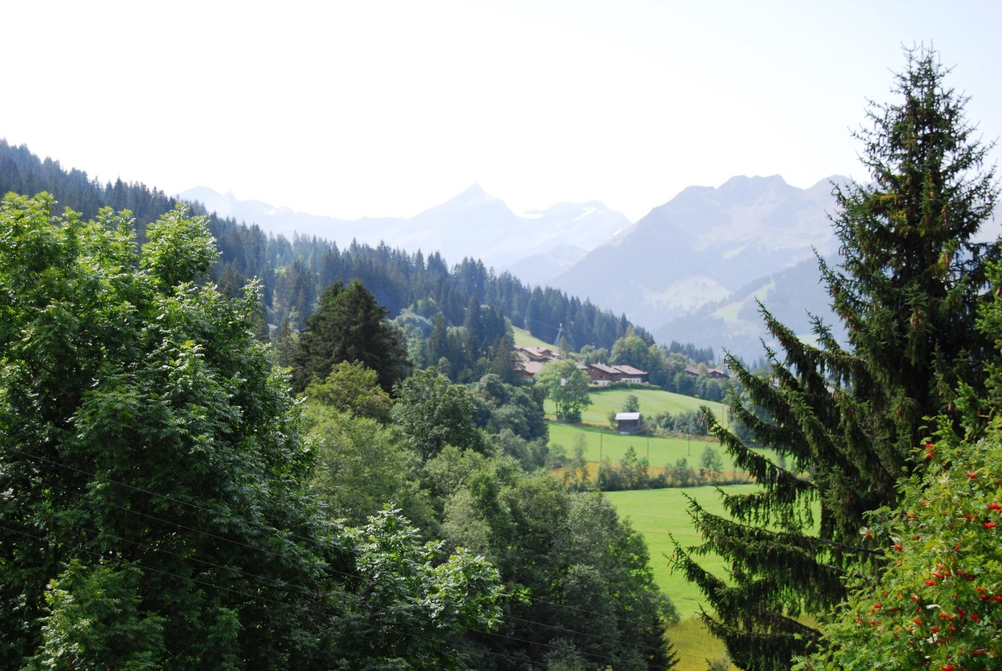 Ferienwohnung Ariel 8-Bettwohnung (591703), Saanenmöser, Gstaad - Saanen, Berner Oberland, Schweiz, Bild 6