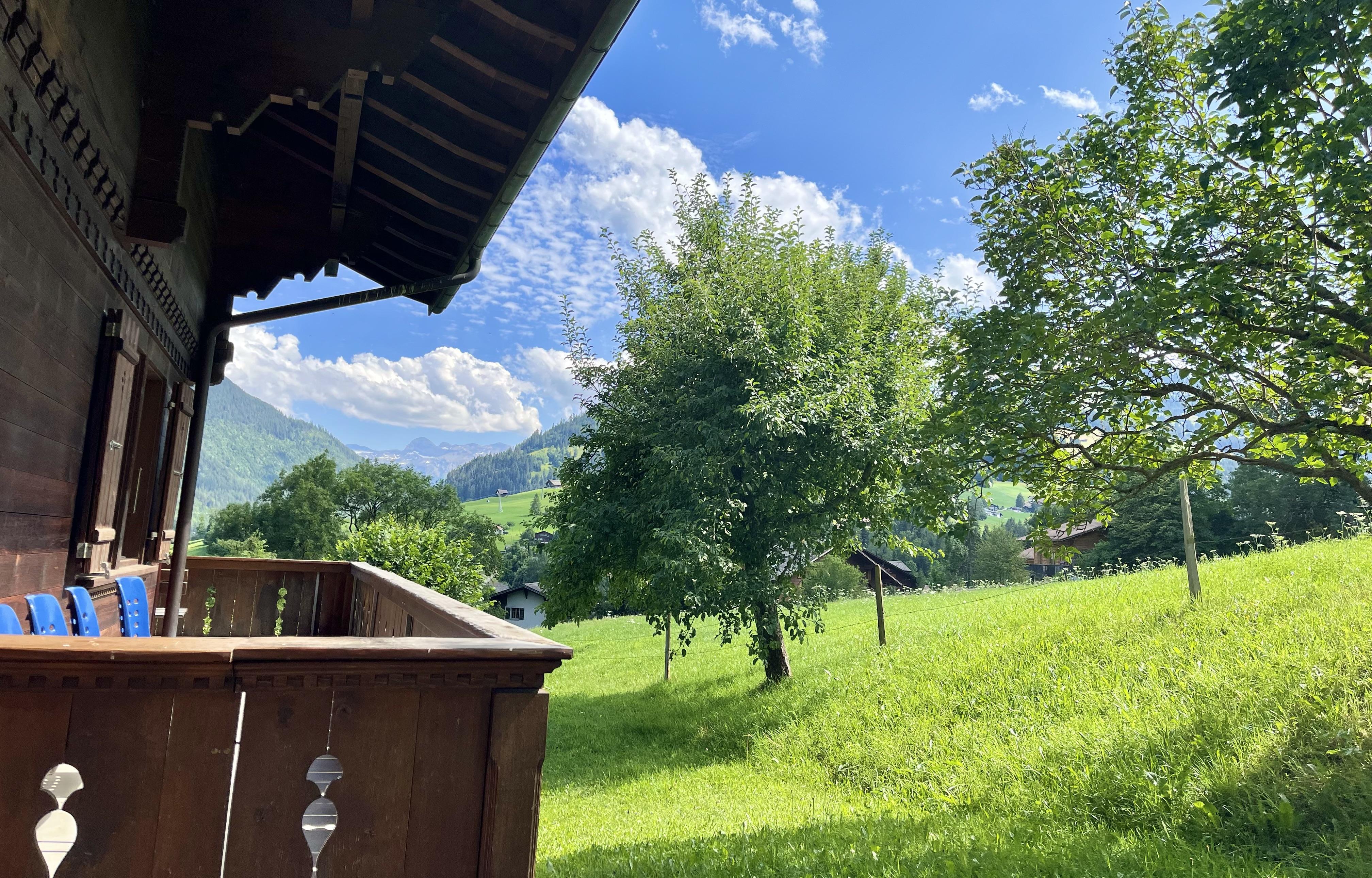 Ferienwohnung Akelei (gross) 7-Bettwohnung (592359), Zweisimmen, Simmental, Berner Oberland, Schweiz, Bild 6