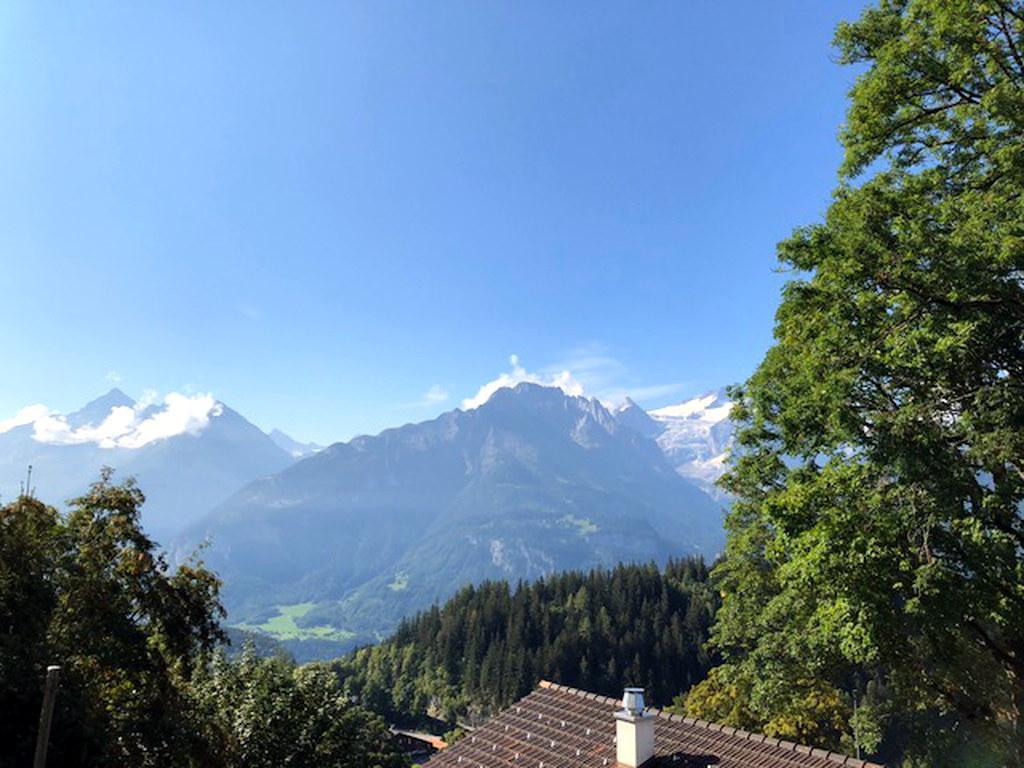 Ferienwohnung Chalet Gibu 6-Bettwohnung (2509142), Hasliberg Wasserwendi, Meiringen - Hasliberg, Berner Oberland, Schweiz, Bild 3
