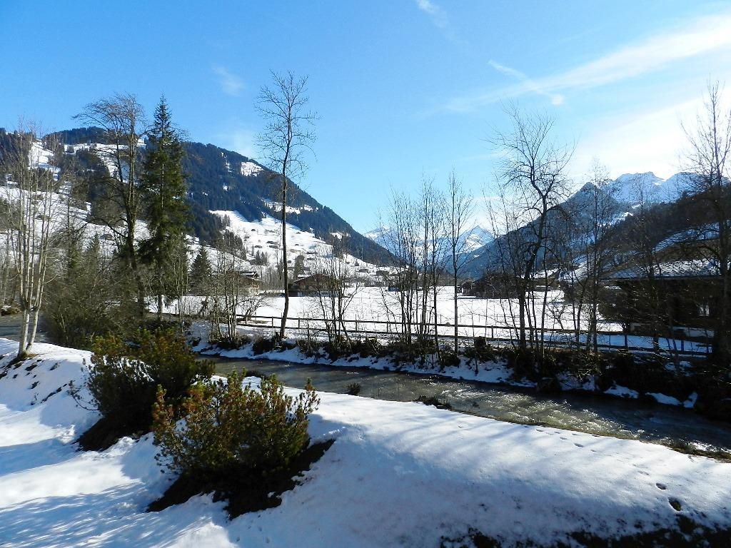 Ferienwohnung La Sarine 112 2-Bettwohnung (592124), Gstaad, Gstaad - Saanen, Berner Oberland, Schweiz, Bild 7