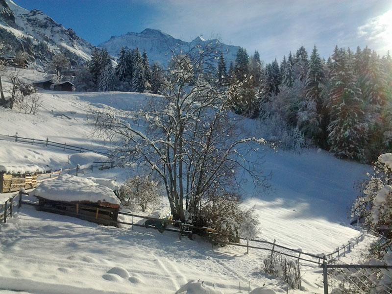 Ferienwohnung Viola 2 Bett Wohnung Obj. W2021 (918258), Wengen, Jungfrauregion, Berner Oberland, Schweiz, Bild 20