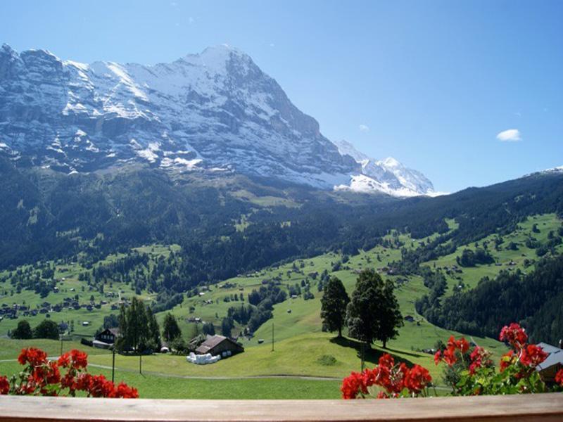 Ferienwohnung Am Eigen 2 Bett Wohnung Obj. 2214 (887328), Grindelwald, Jungfrauregion, Berner Oberland, Schweiz, Bild 4