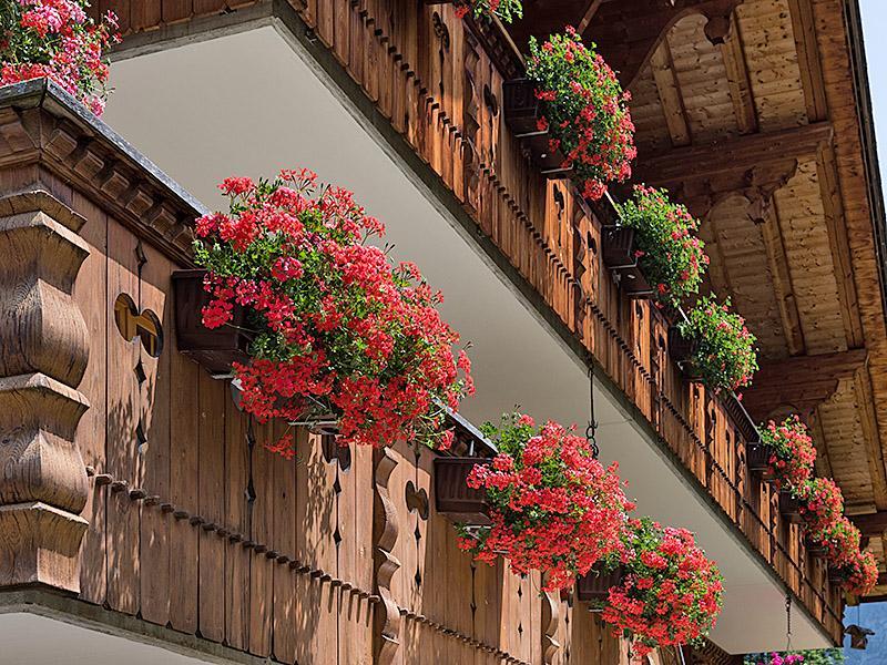 Ferienwohnung Zwygarten 2 Bett Wohnung Obj. 2408 (887331), Grindelwald, Jungfrauregion, Berner Oberland, Schweiz, Bild 3