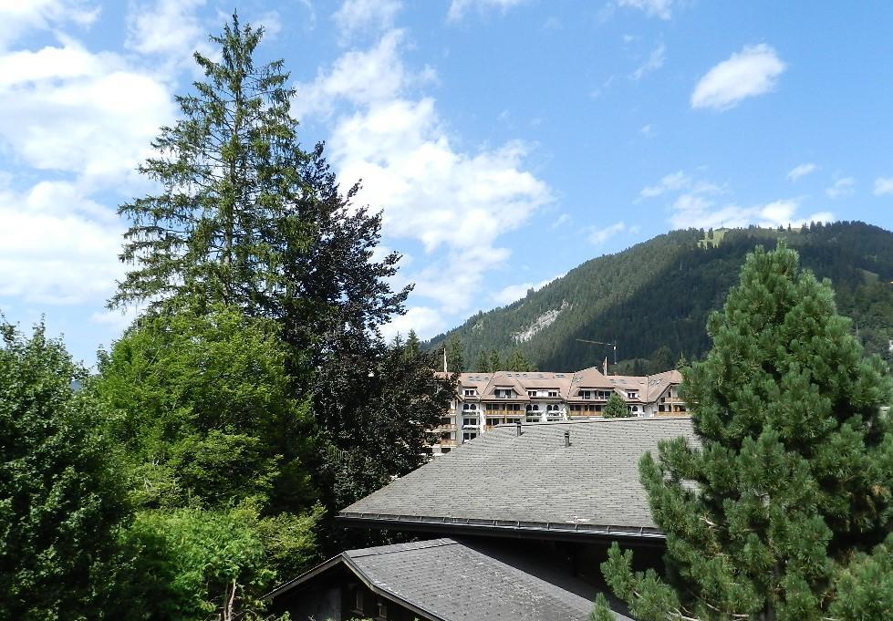 Ferienwohnung Birkenegg 4-Bettwohnung (591685), Gstaad, Gstaad - Saanen, Berner Oberland, Schweiz, Bild 9