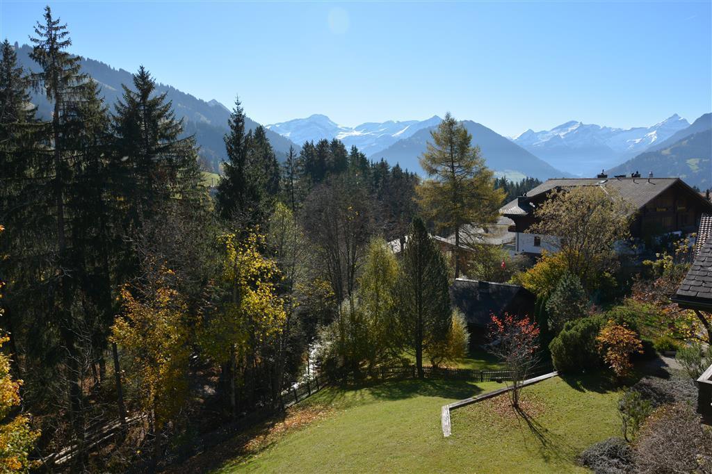 Ferienwohnung Chouflisbach I 6-Bettwohnung (592392), Schönried, Gstaad - Saanen, Berner Oberland, Schweiz, Bild 10