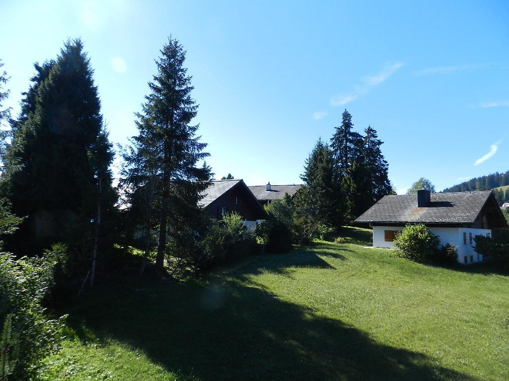 Appartement de vacances Zapfe (Arroyo) 6-Bettwohnung (2009079), Saanenmöser, Gstaad - Saanen, Oberland bernois, Suisse, image 9