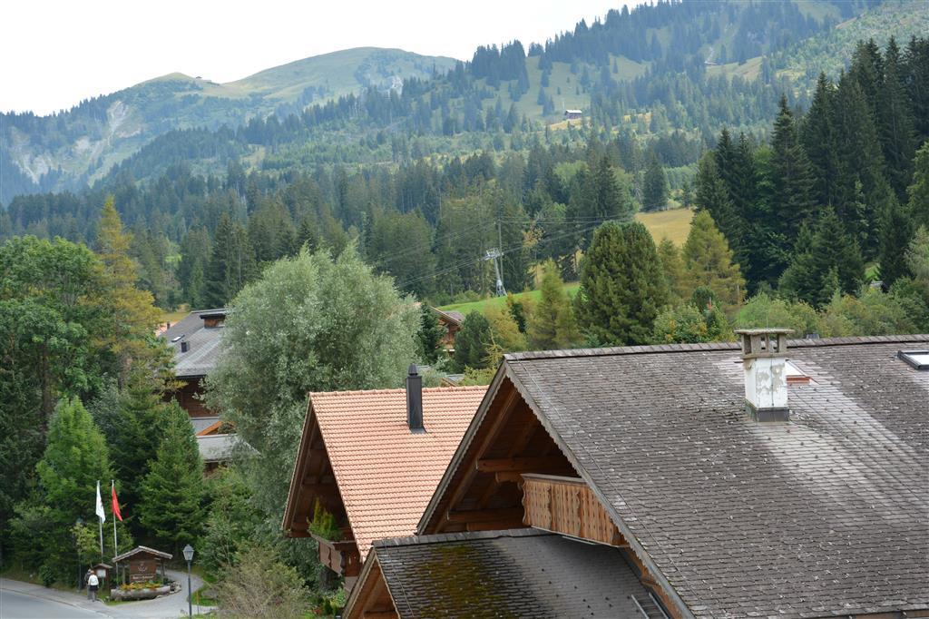 Appartement de vacances Am Dorfplatz 5-Bettwohnung (590048), Saanenmöser, Gstaad - Saanen, Oberland bernois, Suisse, image 5