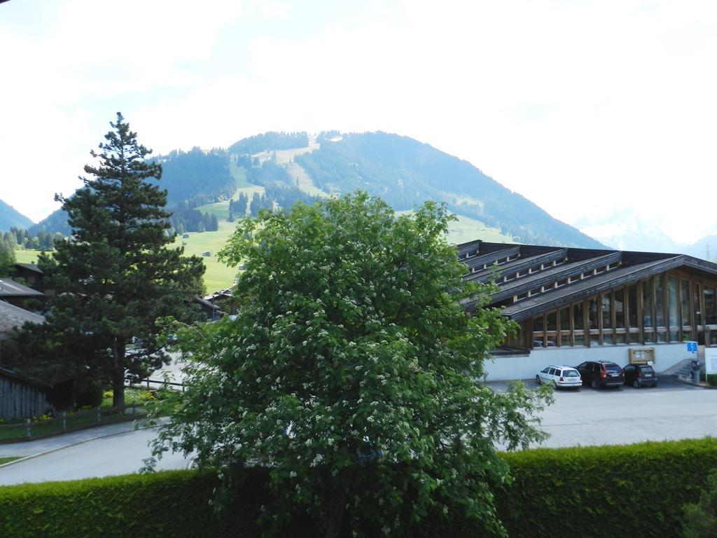 Ferienwohnung La Pernette 4-Bettwohnung (592121), Gstaad, Gstaad - Saanen, Berner Oberland, Schweiz, Bild 8