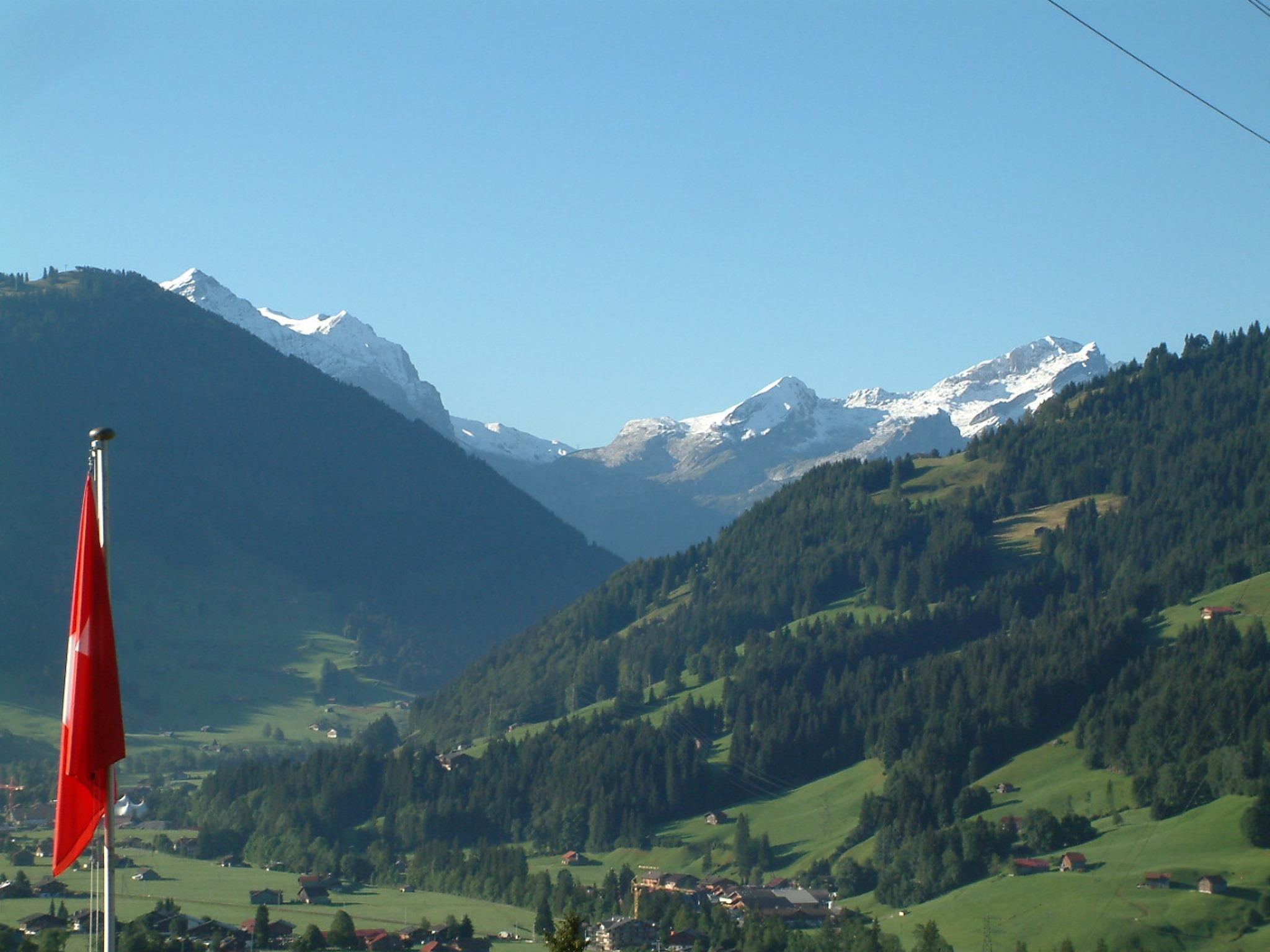 Ferienwohnung Meieli 4-Bettwohnung (591663), Saanen, Gstaad - Saanen, Berner Oberland, Schweiz, Bild 7