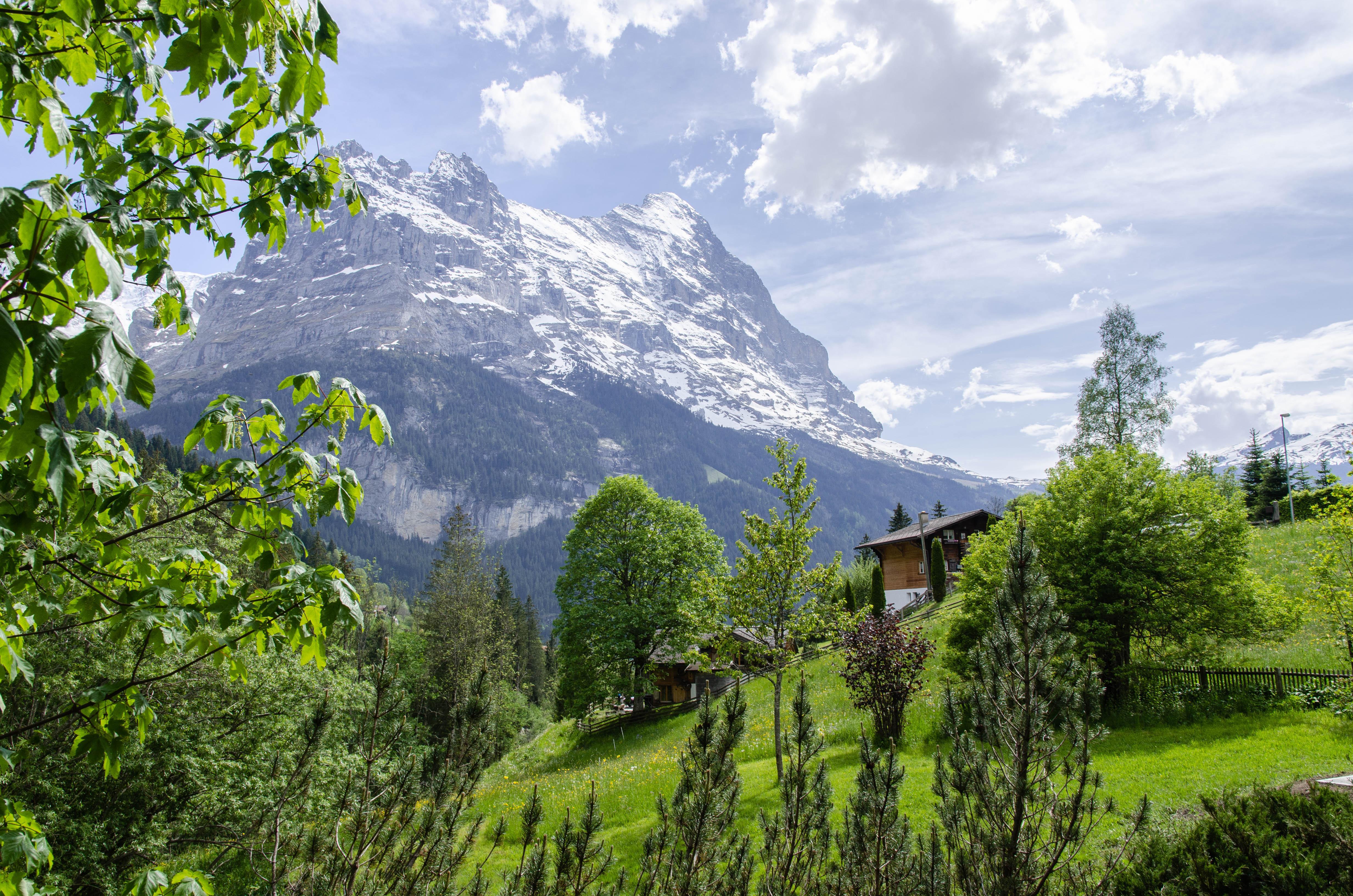 Appartement de vacances Mühlegaden 4 Bett Wohnung Obj. GRIWA4032 (2615675), Grindelwald, Région de la Jungfrau, Oberland bernois, Suisse, image 9