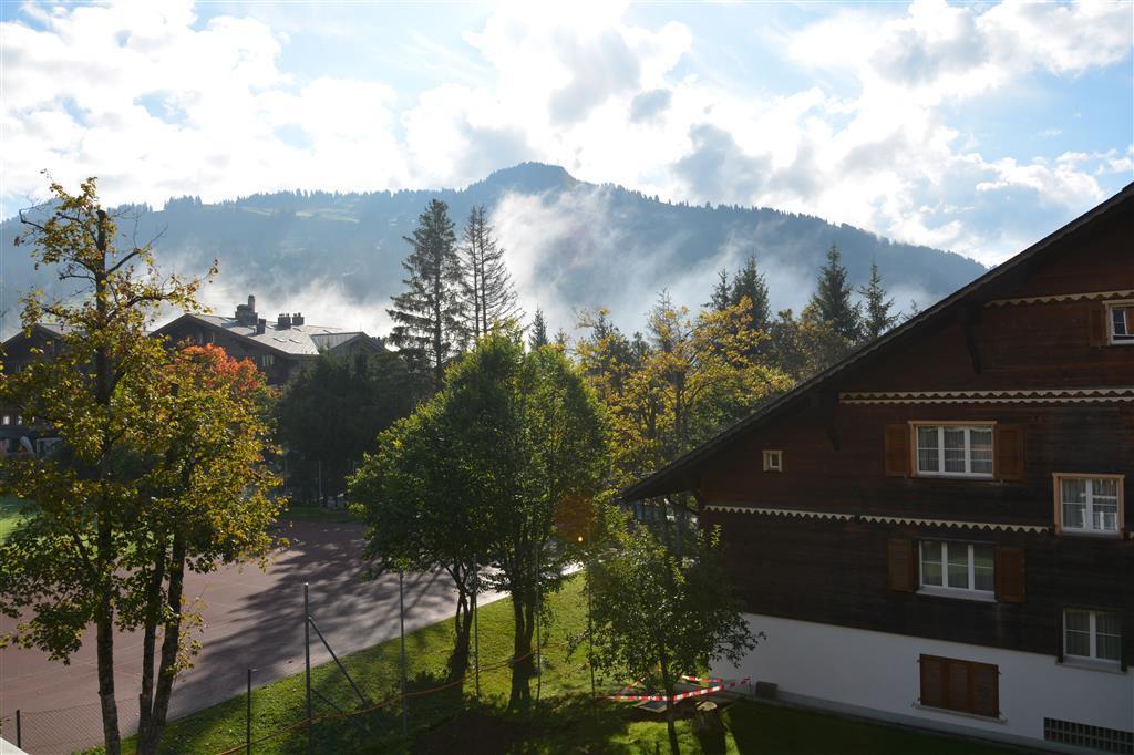 Ferienwohnung Suzanne Nr. 19 2-Bettwohnung (591781), Schönried, Gstaad - Saanen, Berner Oberland, Schweiz, Bild 4