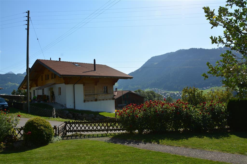 Ferienwohnung Haldi 3-Bettwohnung (591728), Zweisimmen, Simmental, Berner Oberland, Schweiz, Bild 8