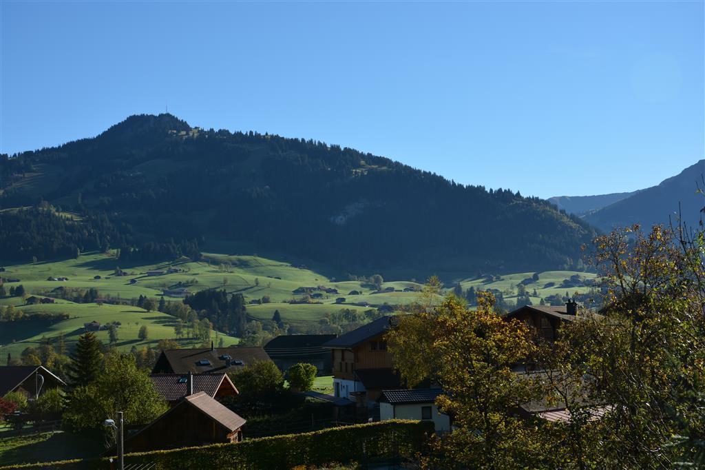 Ferienwohnung Hornflue (Wohlwender) 2-Bettwohnung (592895), Saanen, Gstaad - Saanen, Berner Oberland, Schweiz, Bild 9