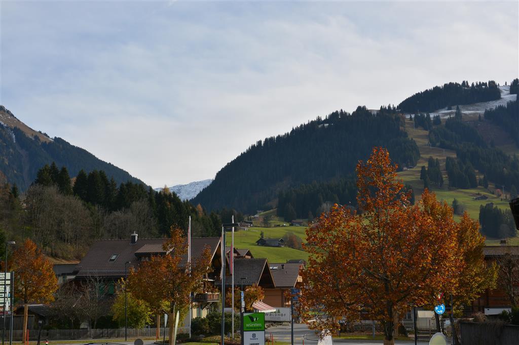 Appartement de vacances Schmiede-Stöckli 6-Bettwohnung (591665), Gstaad, Gstaad - Saanen, Oberland bernois, Suisse, image 7