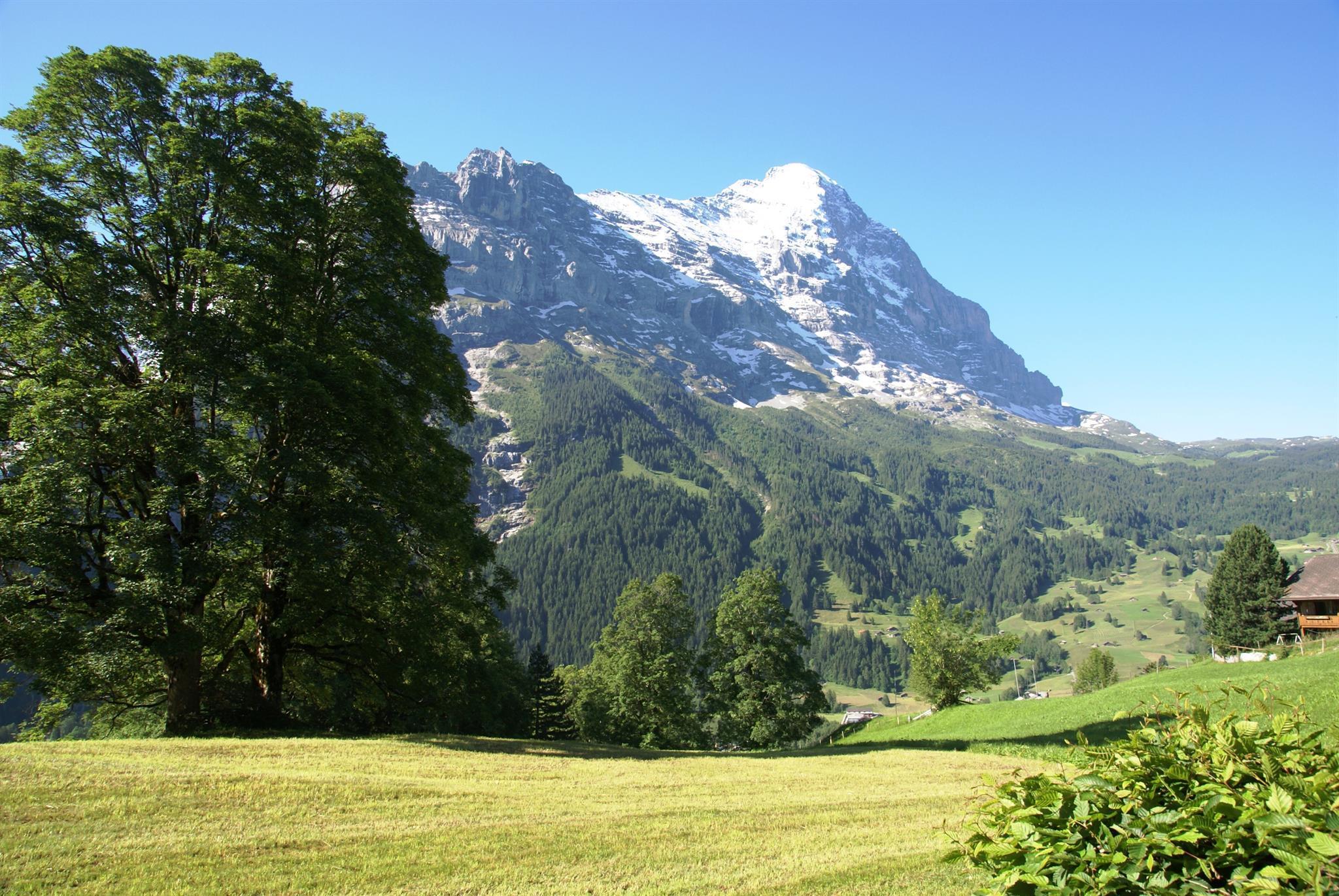 Ferienwohnung Nussbaum 4 Bett Wohnung Obj. GRIWA4009 (918267), Grindelwald, Jungfrauregion, Berner Oberland, Schweiz, Bild 11