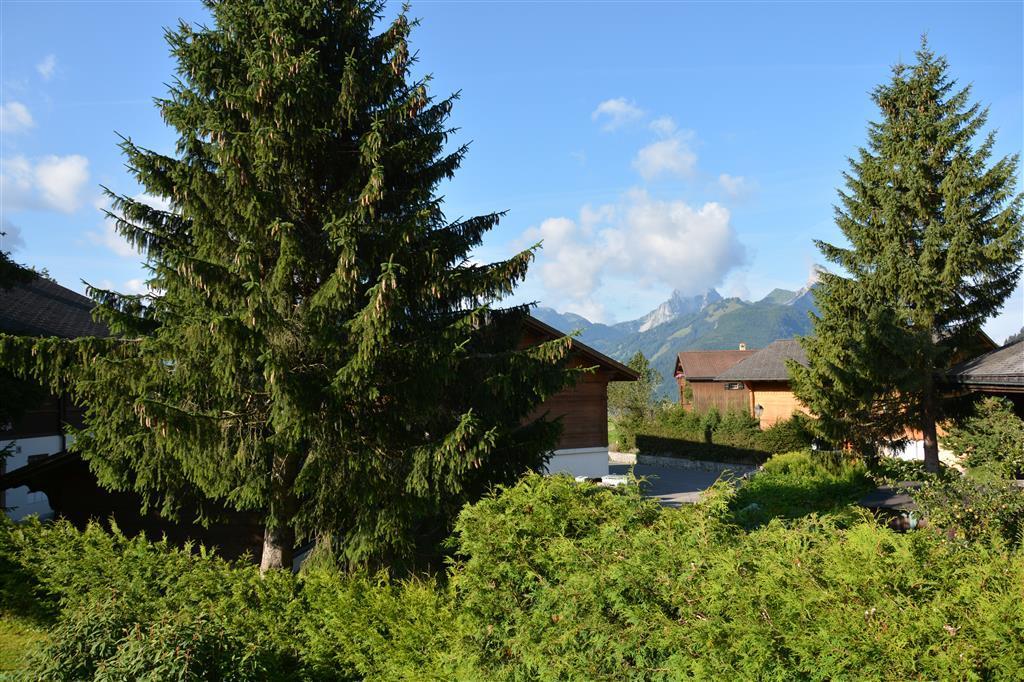 Ferienwohnung Riedbode 8-Bettwohnung (592230), Schönried, Gstaad - Saanen, Berner Oberland, Schweiz, Bild 5