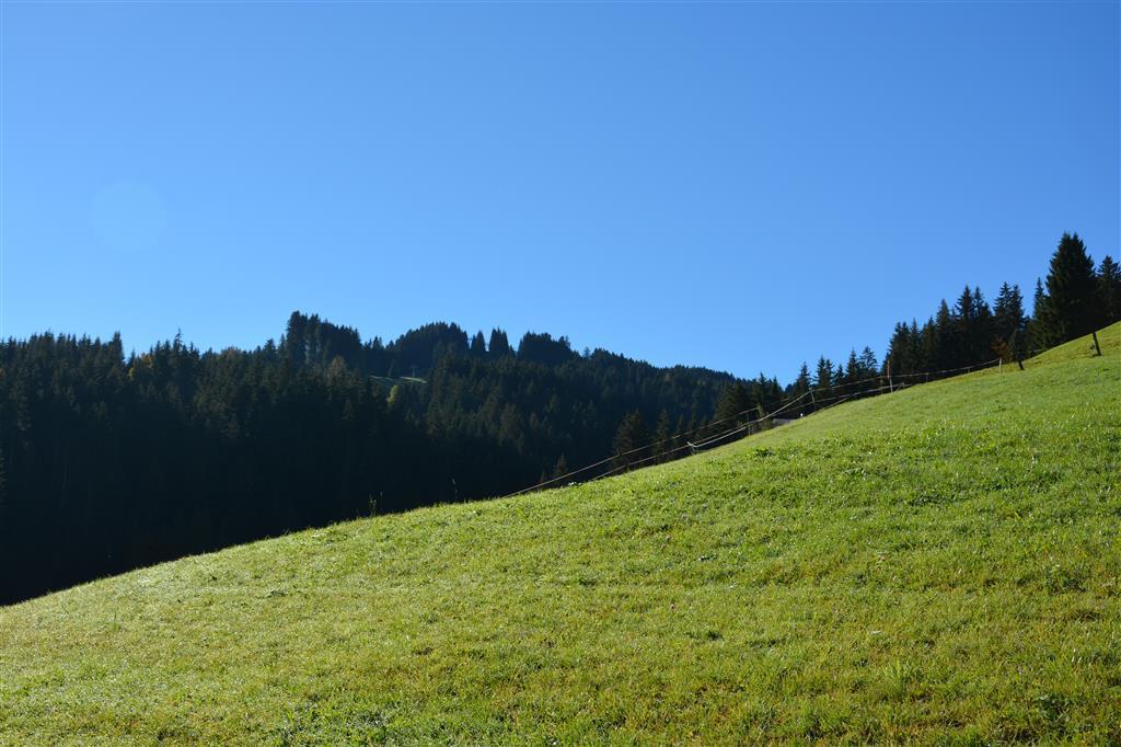 Ferienwohnung Hornflue (Wohlwender) 2-Bettwohnung (592895), Saanen, Gstaad - Saanen, Berner Oberland, Schweiz, Bild 7