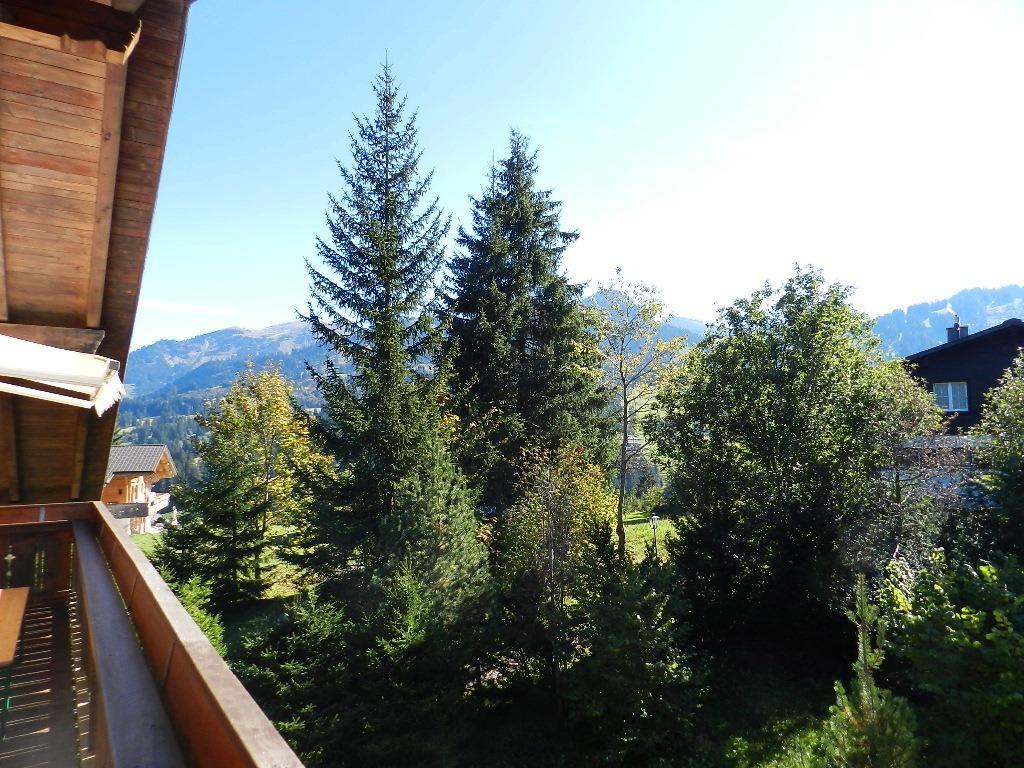 Appartement de vacances Zapfe (Arroyo) 6-Bettwohnung (2009079), Saanenmöser, Gstaad - Saanen, Oberland bernois, Suisse, image 8