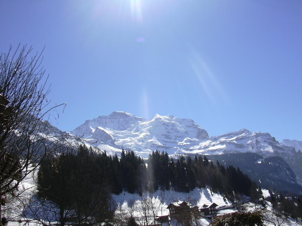 Ferienwohnung Birkli 2 2 Bett Wohnung Obj. W2002 (2575325), Wengen, Jungfrauregion, Berner Oberland, Schweiz, Bild 16