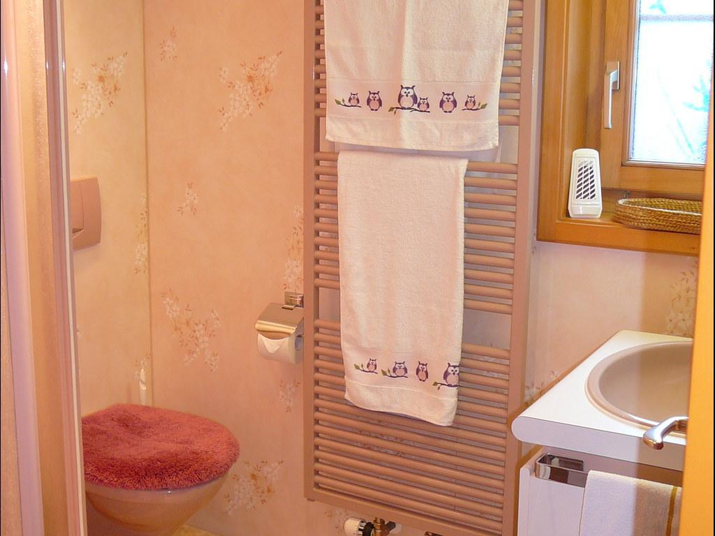 Ferienwohnung Birkli 2 2 Bett Wohnung Obj. W2002 (2575325), Wengen, Jungfrauregion, Berner Oberland, Schweiz, Bild 25